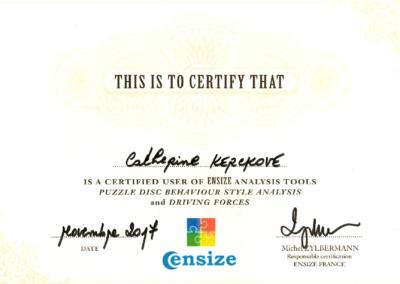 DISC Certificate
